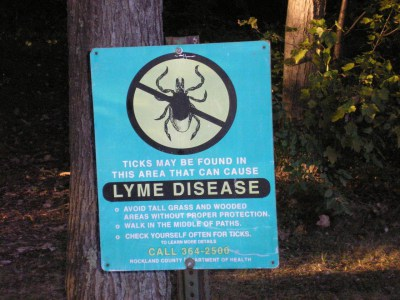 Treatment Options for Lyme Disease: Conventional or Alternative?